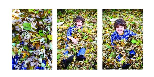 charlie_leaf pile